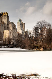 Central Park South Side by David Tinsley