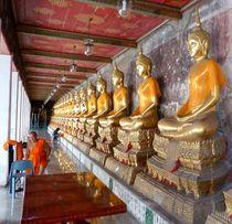 die Buddhaversammlung von reisemonster