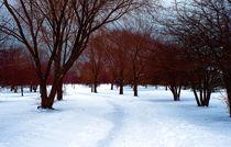 Winter-atistry