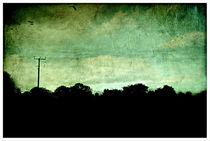 Norfolk Scenery by rosanna zavanaiu