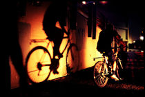 The Shadow And It's Cyclist von Larisa Kroshkin