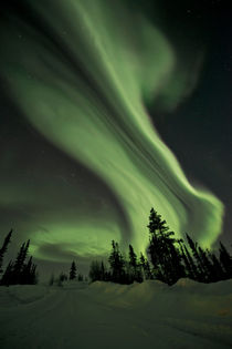 Swirls of Northern Lights over the Midnight Dome by Priska  Wettstein