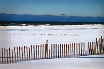 Winter-at-the-beach