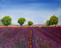 Lavendelfeld von Petra Koob