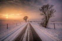 winter von Manfred Hartmann