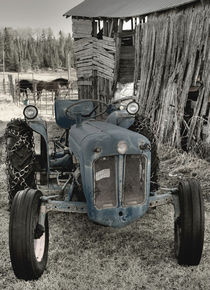 Old Blue by heather  rivet