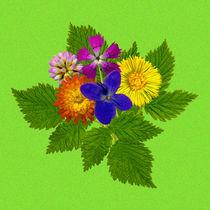 Blumenstrauß mit bunten Blumen auf grünem Hintergrund by Manfred Koch