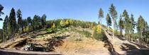 Bergkuppepanorama25mb