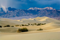 Death Valley Storm von Barbara Magnuson & Larry Kimball