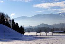 Allgäu im Winter von topas images