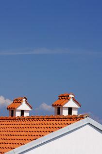 9583-chimneys