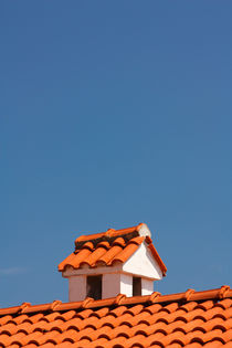 A chimney on the roof. by Gordan Bakovic