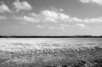 NaturePower by Abdullah Geels