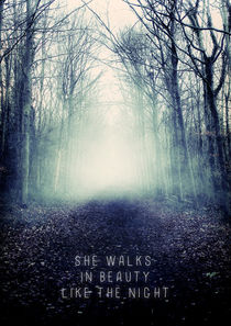 She Walks in Beauty by Sybille Sterk