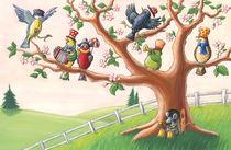 Alle Vögel sind schon da von Axel Dissmann