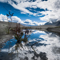 Nubra Valley. Himalaya mountains. Ladakh by perfectlazybones
