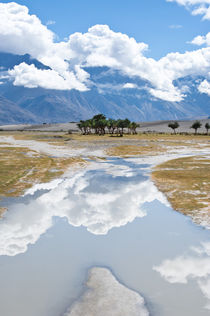 Nubra Valley. India, Ladakh by perfectlazybones