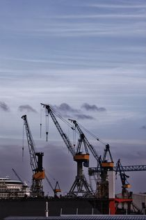 The Cranes of Hamburg by Michael Beilicke