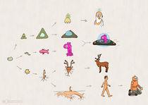 Evolution von Frank Zimmermann