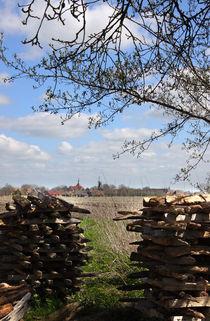 Frühling in Rysum - spring von ropo13