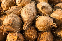 Coconuts by perfectlazybones