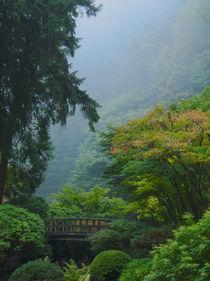 Garden Bridge in the Mist von Don Schwartz