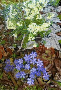 Frühlingsblumen by Heidi Schmitt-Lermann