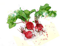 red beet by Sabine Israel