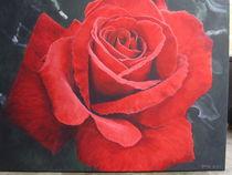 Die Rose, die nie verwelkt von Gaby Bühler