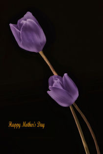 A-mothers-day-wish