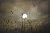 Lovers-moon2