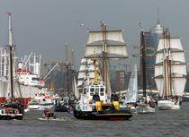 Hamburg feiert by Peter Norden