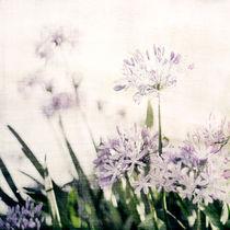 Aggies von Linde Townsend