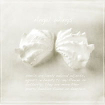 Angel Wings von Linde Townsend