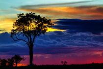 Sunset in Masai Mara, Kenya von Maggy Meyer