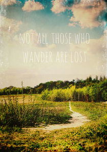 not all those who wander are lost by Sybille Sterk