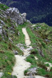 Alpenwanderung von Jens Berger