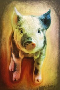 Pig-is-beautifuljpg