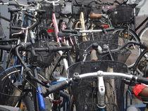 Bikes by Sergio Cabrera