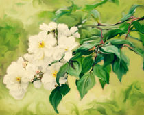 Painted Roses von Linde Townsend