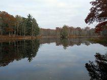 lake in autumn by Wolfgang Schweizer