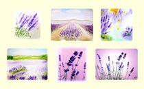 Lavendel  by Maria-Anna  Ziehr