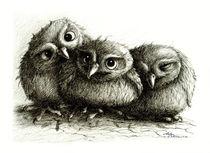 Drei Eulen - Three Owls by Stefan Kahlhammer
