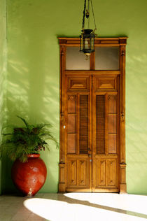 Merida Door and Plant Mexico von John Mitchell