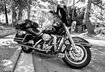 Mono Harley von Rob Hawkins