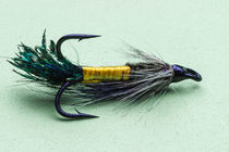 Salmon fishing fly von Craig Lapsley