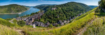 Bacharach mit Stahleck (7+) by Erhard Hess