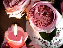 Rosenlicht-1001-1-ch-druck
