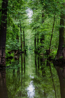 Spreewald by Andreas Levi