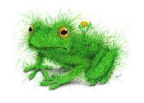 Grasfrosch - Grass Frog von Stefan Kahlhammer